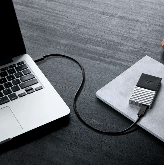 WD My Passport 256GB SSD USB-C External Portable Storage - Black (WDBKVX2560PSL-WESN)