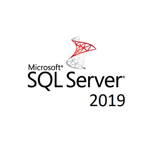 Microsoft SQL Server 2019 Standard - Licence - 1 Server - OLP: Open Business - Windows - Single Language